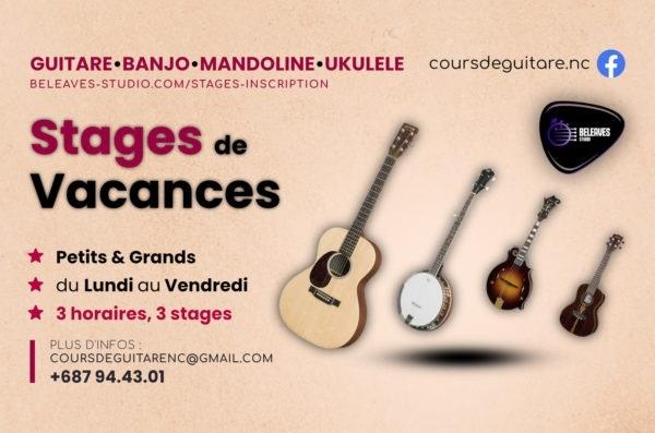 Stages de vacances guitare banjo mandoline ukulele